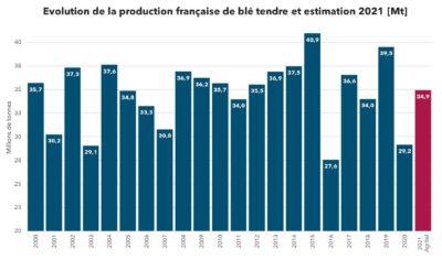 Bilan de la récolte de blé français 2021